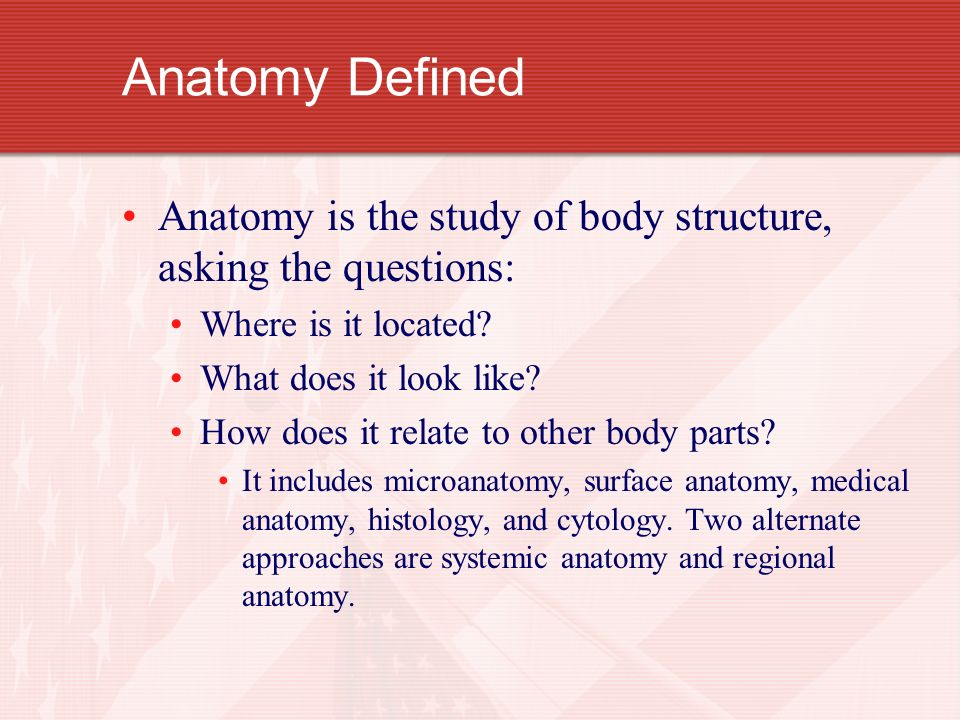 Anatomy & Physiology Chapter 1. Anatomy Defined Anatomy is the study ...
