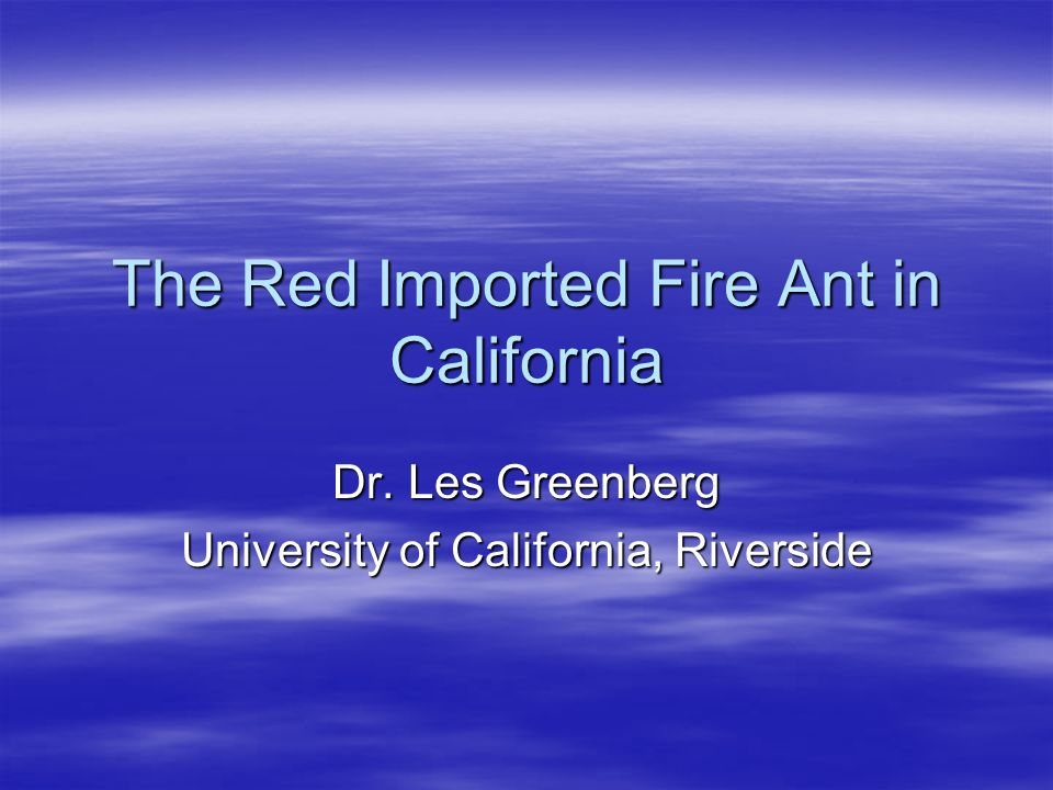 The Red Imported Fire Ant in California Dr. Les Greenberg University of California, Riverside
