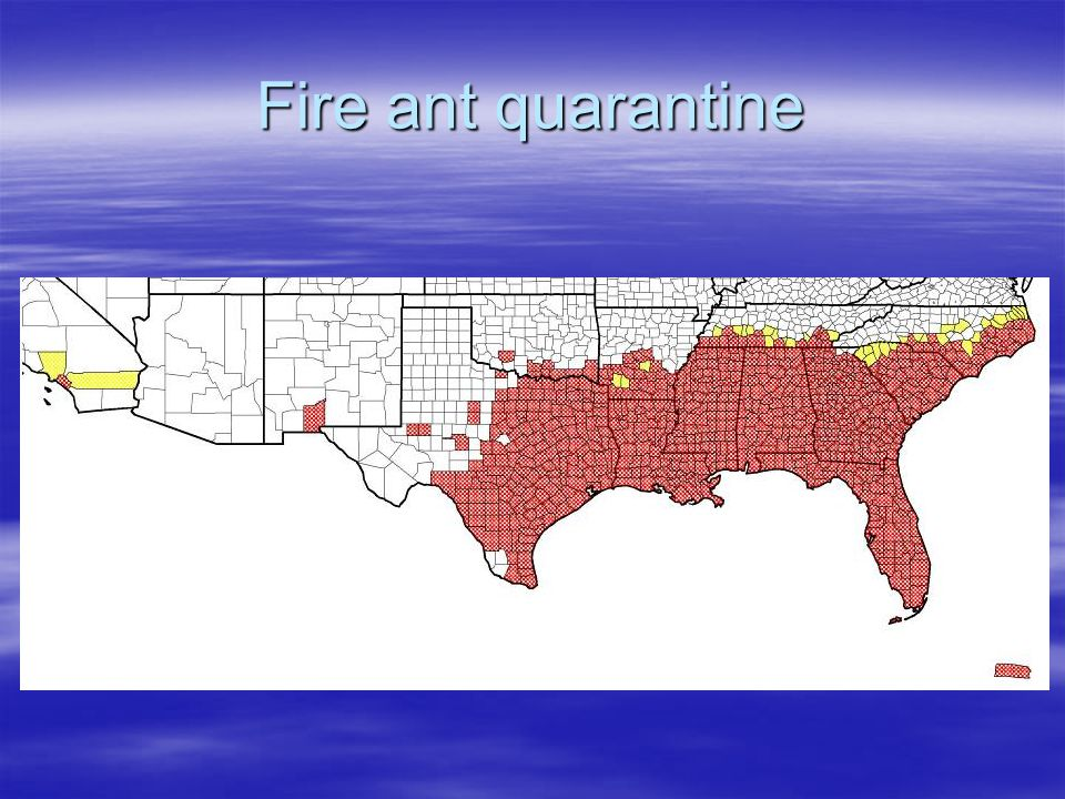 Fire ant quarantine