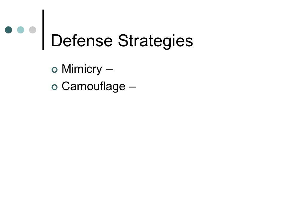 Defense Strategies Mimicry – Camouflage –