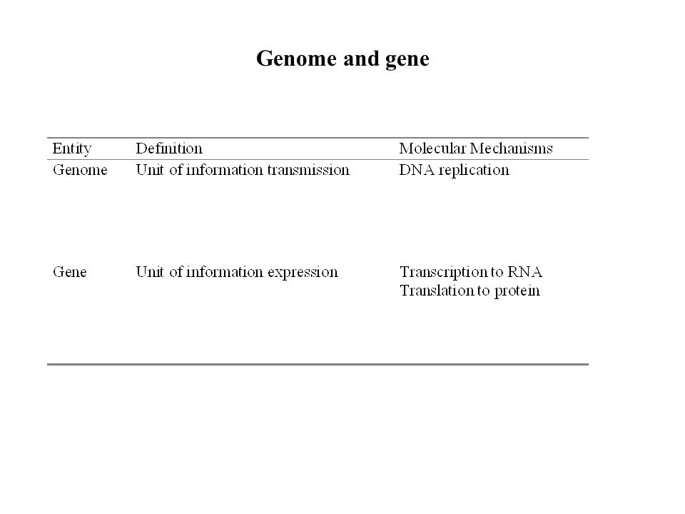 Blueprint of life based on chapter 1 of post genome informatics by 2 genome and gene malvernweather Choice Image
