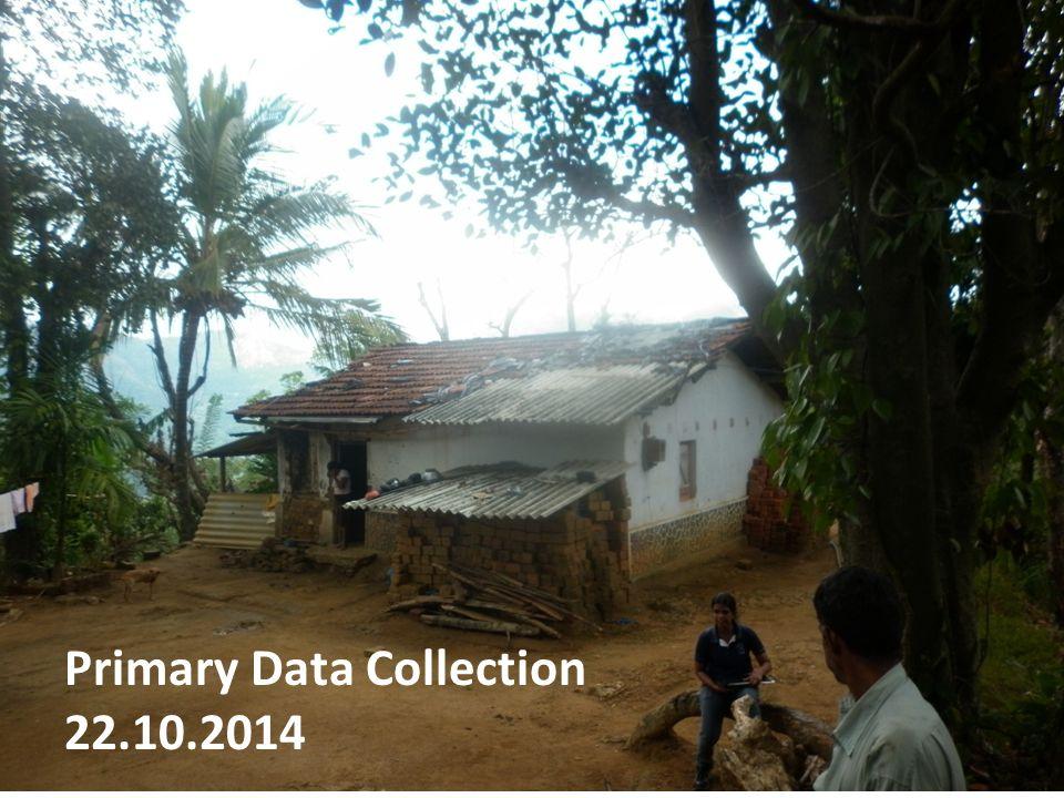 Primary Data Collection Primary Data Collection Strategies Survey