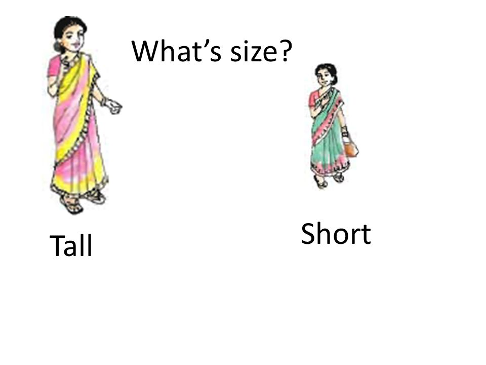 What's size Tall Short