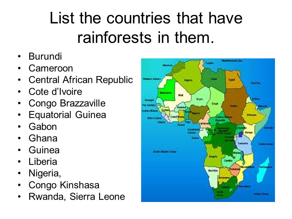 List the countries that have rainforests in them.
