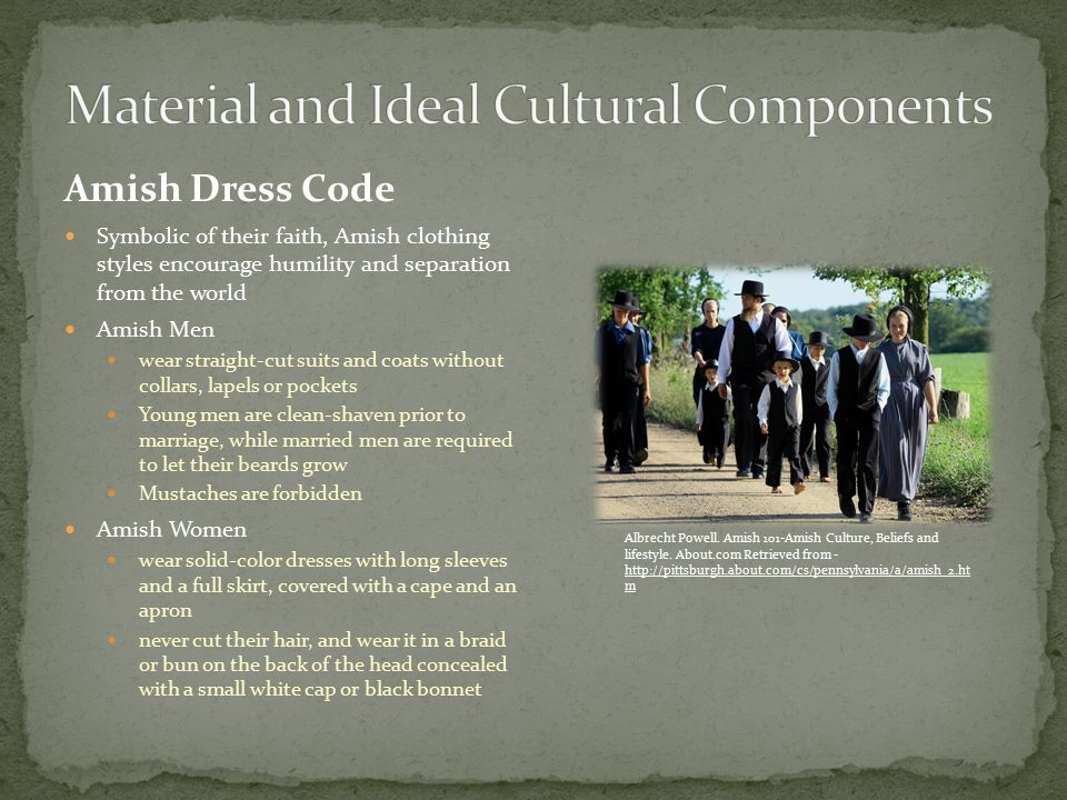 amish and the cultural difference in Culture of the amish while the details of the procedures may vary in different congregations family is the most important aspect of the amish culture.