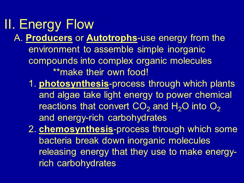 II. Energy Flow A.