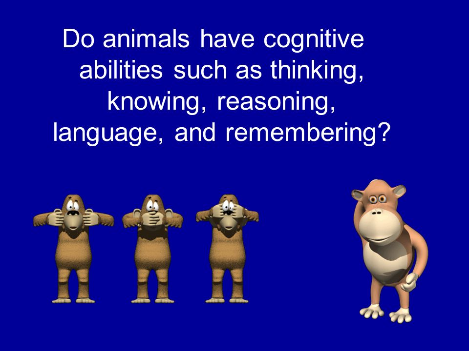 Do animals have cognitive abilities such as thinking, knowing, reasoning, language, and remembering