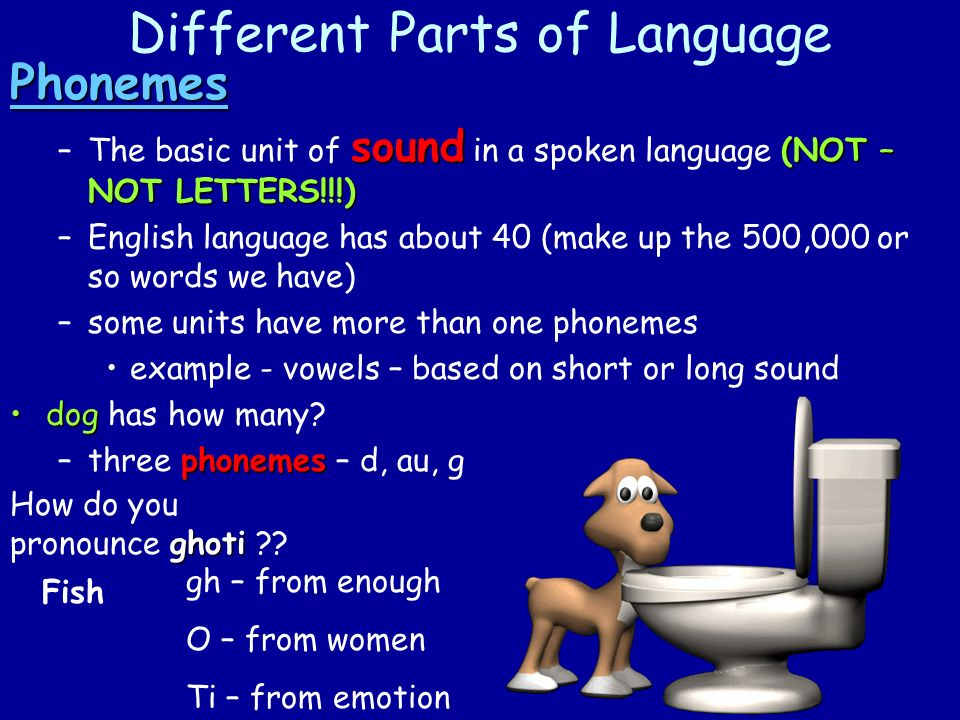 Different Parts of Language Phonemes sound (NOT – NOT LETTERS!!!) –The basic unit of sound in a spoken language (NOT – NOT LETTERS!!!) –English language has about 40 (make up the 500,000 or so words we have) –some units have more than one phonemes example - vowels – based on short or long sound dogdog has how many.