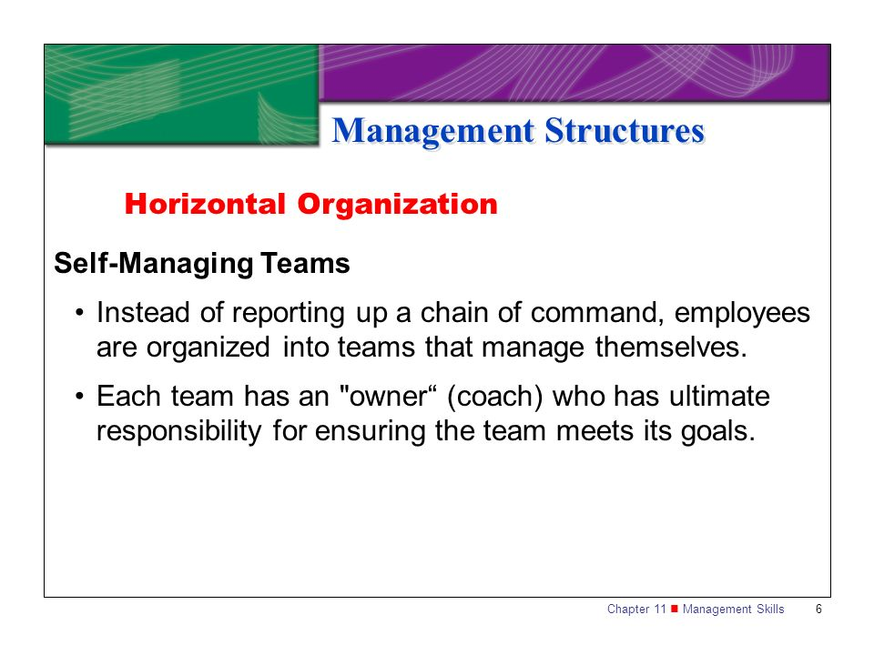 Chapter 11 Management Skills 7 Management Structures Organization by Process Teams of people with different specializations are organized around processes, such as developing new products or providing customer support.
