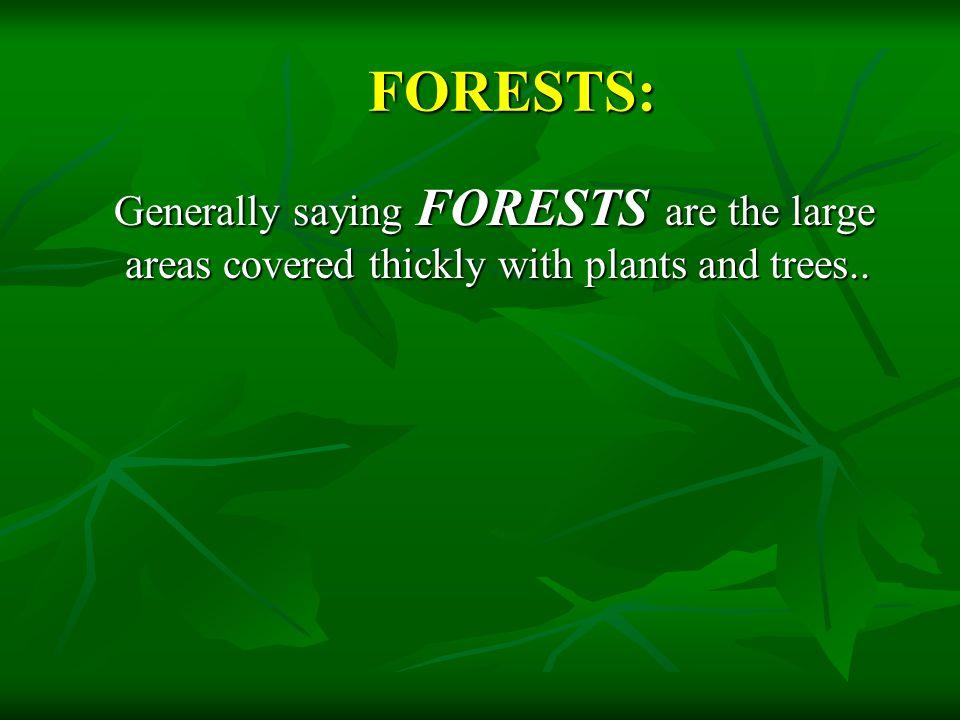 TITLE: FORESTS AND WILDLIFE AUTHOR'S NAME: DHANYA MANOOR AFFILIATION: STUDENT (10 TH STANDARD, VIKASA HIGH SCHOOL ) ADDRESS: VIKASA HIGH SCHOOL, ALKOLA, SHIVAMOGGA 577204