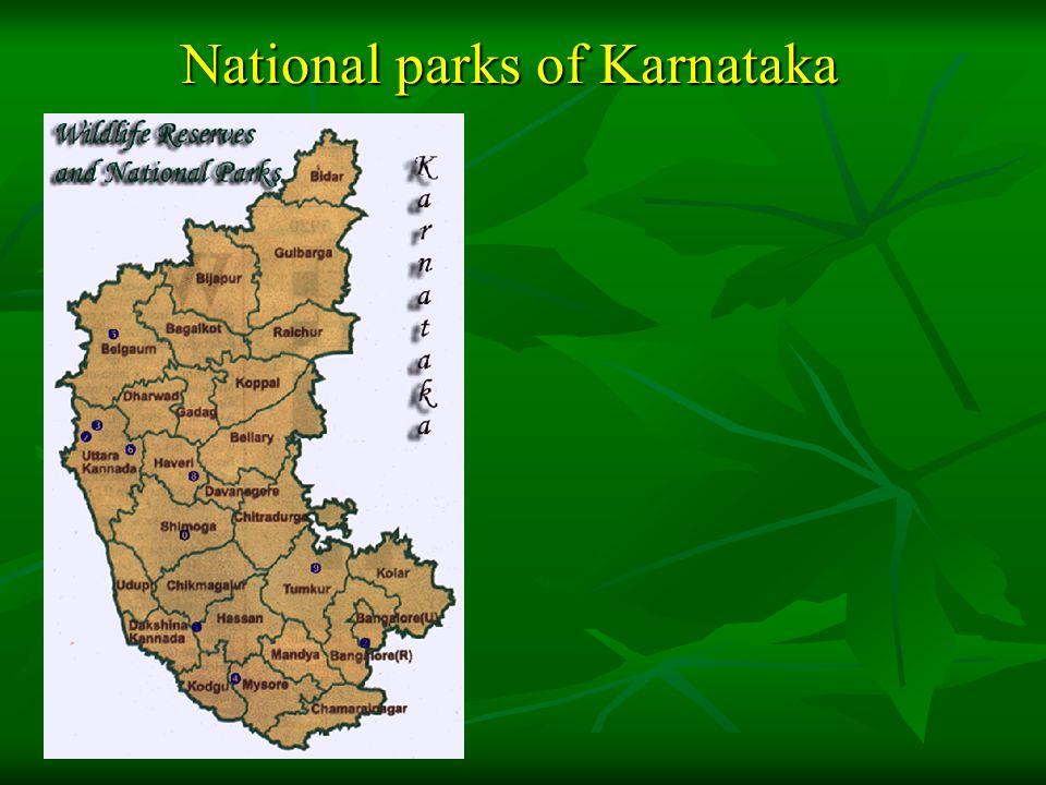 NATIONAL PARKS IN KARNATAKA Bandipur Bandipur Bannerghatta Bannerghatta Nagarahole Nagarahole Kudermukh Kudermukh Anashi Anashi