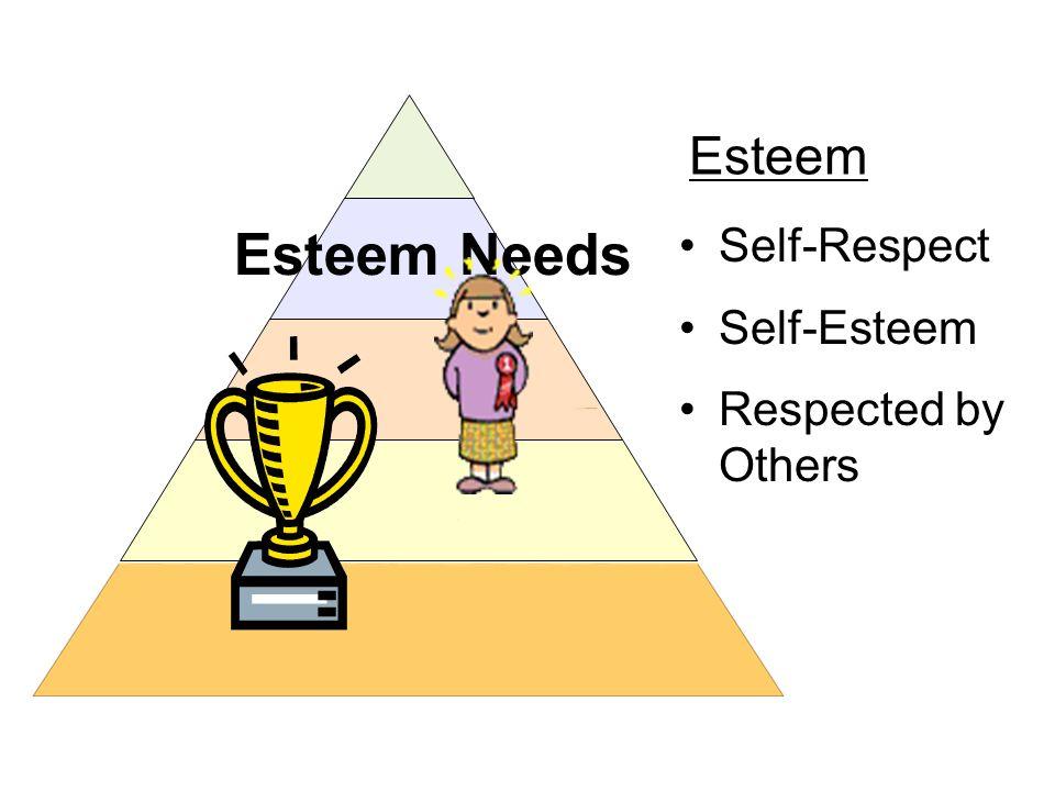 Esteem Needs Self-Respect Self-Esteem Respected by Others Esteem