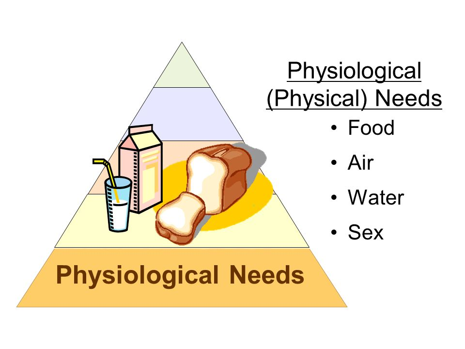 Physiological Needs Food Air Water Sex Physiological (Physical) Needs