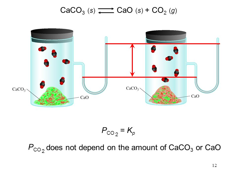 12 P CO 2 = K p CaCO 3 (s) CaO (s) + CO 2 (g) P CO 2 does not depend on the amount of CaCO 3 or CaO