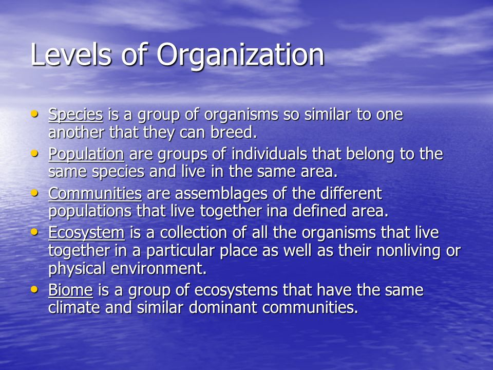 Levels of Organization Species is a group of organisms so similar to one another that they can breed.
