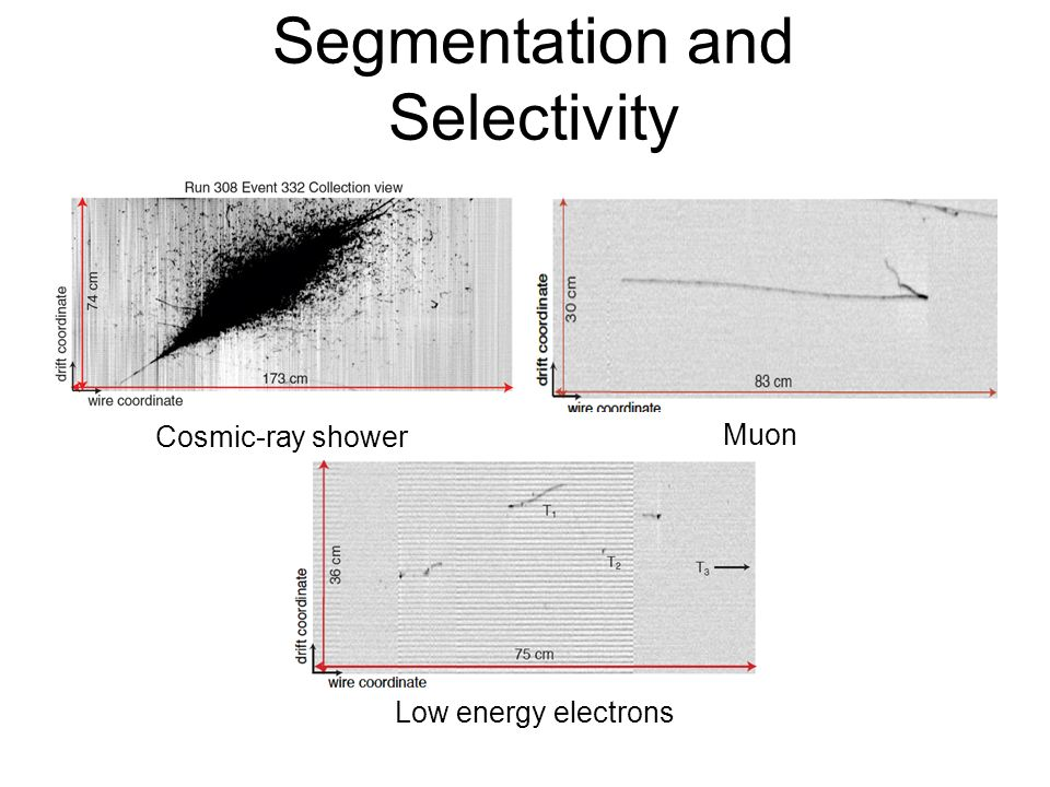 Segmentation and Selectivity Cosmic-ray shower Muon Low energy electrons