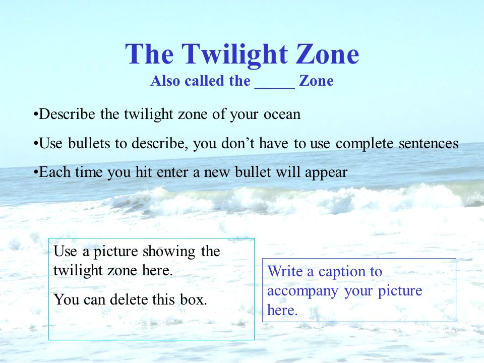Name of ocean give credit to who worked on research and slide show the twilight zone also called the zone describe the twilight zone of your ocean use toneelgroepblik Choice Image