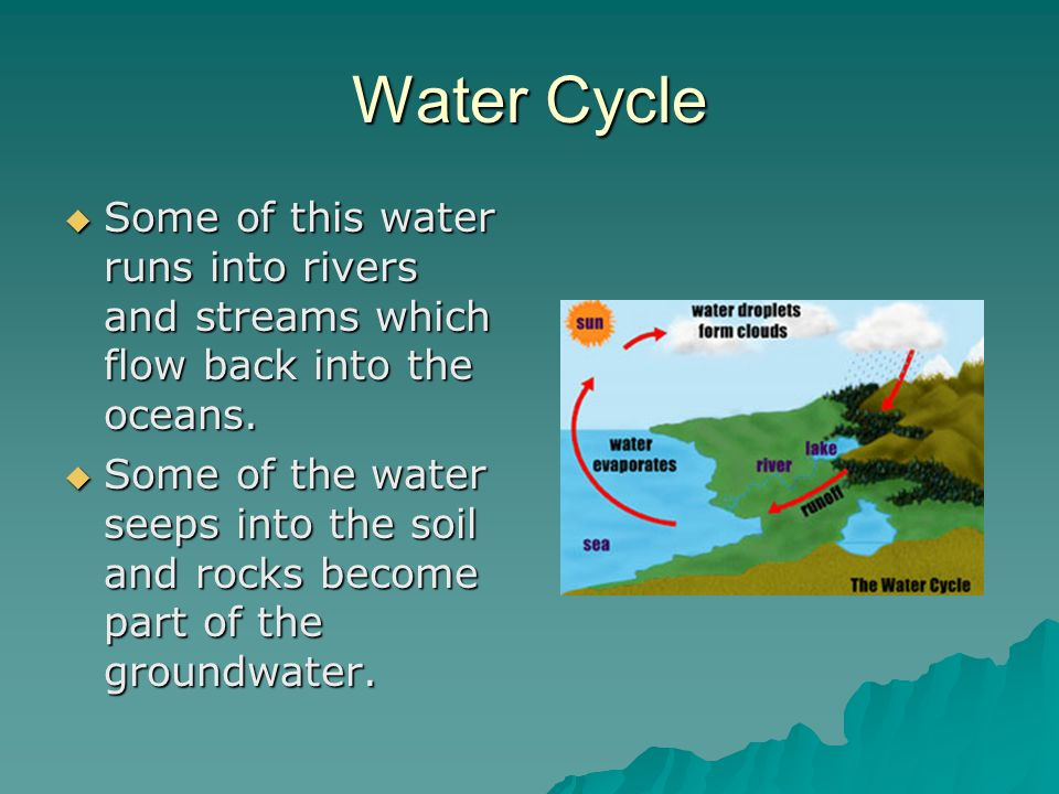 Water Cycle  Some of this water runs into rivers and streams which flow back into the oceans.