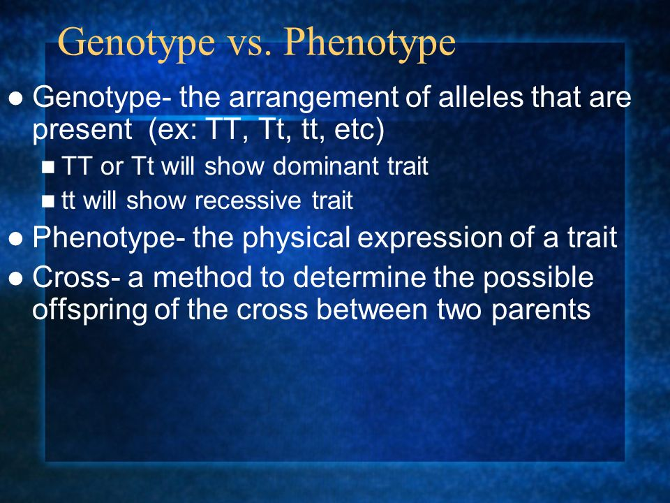 Homozygous vs Heterozygous Each trait is coded for by two alleles (1 allele passed on from each parent) Allele can be dominant (T) or recessive (t) If alleles are the same, the organism is said to be homozygous for that trait Homozygous dominant (TT) Homozygous recessive (tt) If alleles are different, the organisms is said to be heterozygous for that trait (Tt)