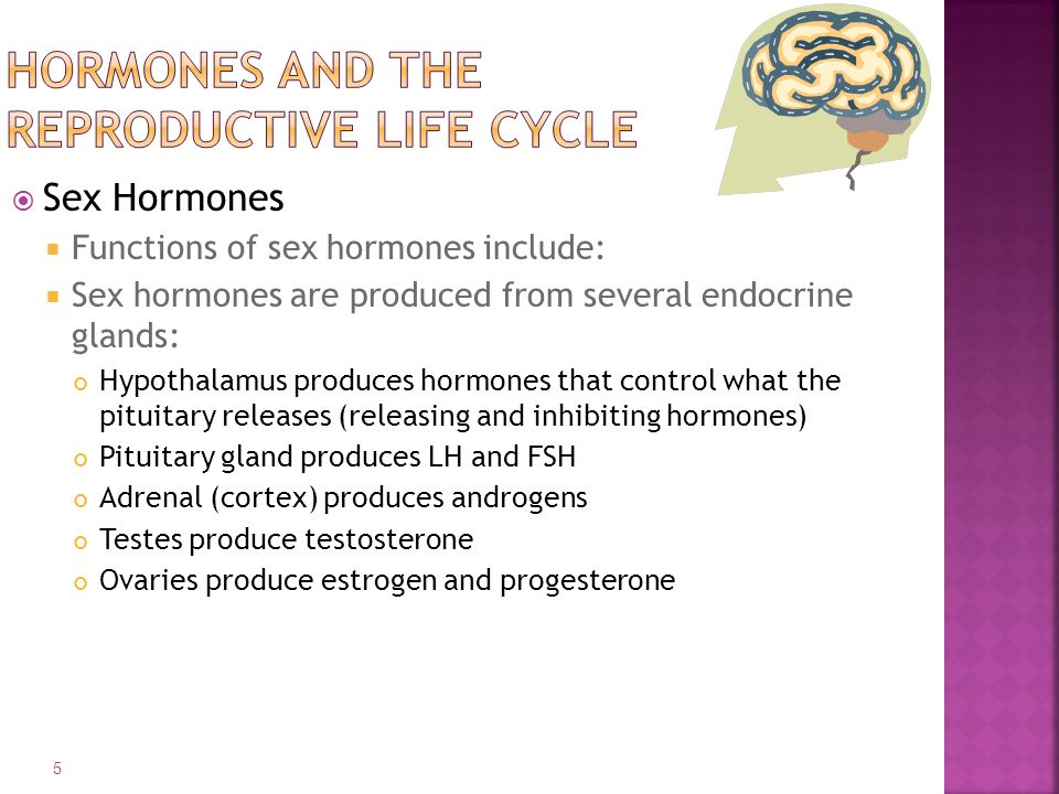  Sex Hormones  Functions of sex hormones include:  Sex hormones are produced from several endocrine glands: Hypothalamus produces hormones that control what the pituitary releases (releasing and inhibiting hormones) Pituitary gland produces LH and FSH Adrenal (cortex) produces androgens Testes produce testosterone Ovaries produce estrogen and progesterone 5