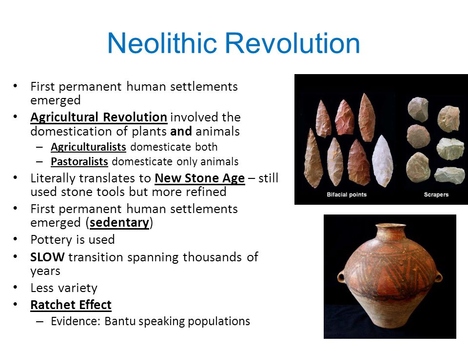"neolithic revolution paper Neolithic is of or relating to the cultural periods of the stone age beginning around the neolithic revolution research paper ""the neolithic."