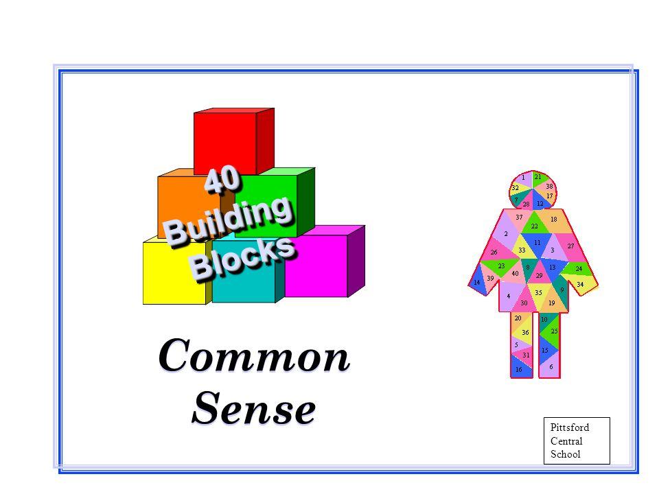 Common Sense Common Sense 40BuildingBlocks40BuildingBlocks Pittsford Central School