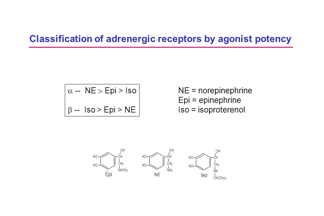 Classification of adrenergic receptors by agonist potency  -- NE  Epi > Iso  -- Iso > Epi > NE NE = norepinephrine Epi = epinephrine Iso = isoprote
