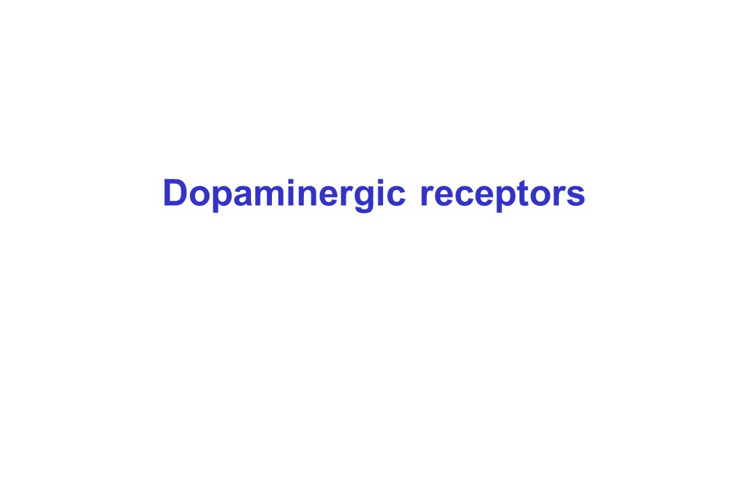 Dopaminergic receptors