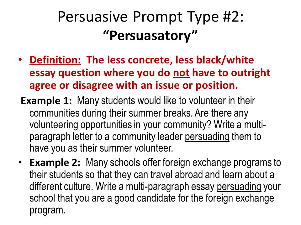 persuassive essay writing prompt