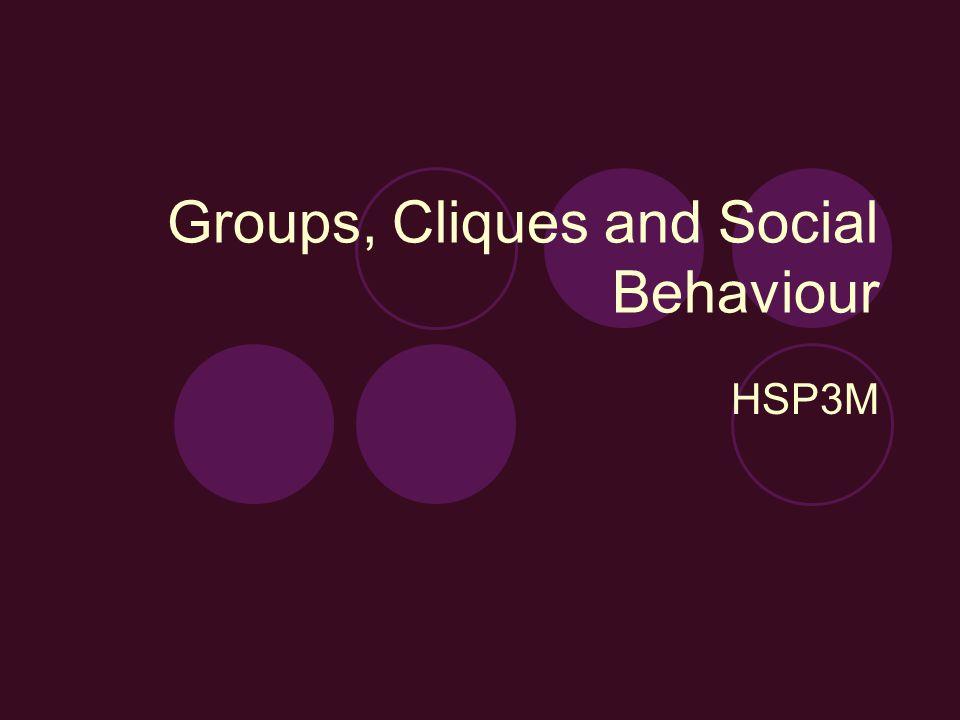 Groups, Cliques and Social Behaviour HSP3M