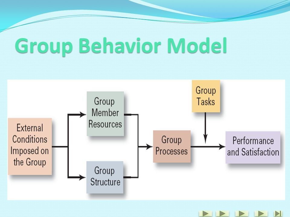 Group Behavior Model