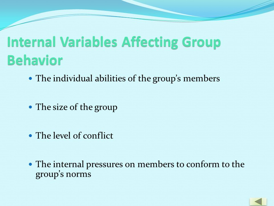 Internal Variables Affecting Group Behavior The individual abilities of the group's members The size of the group The level of conflict The internal pressures on members to conform to the group's norms
