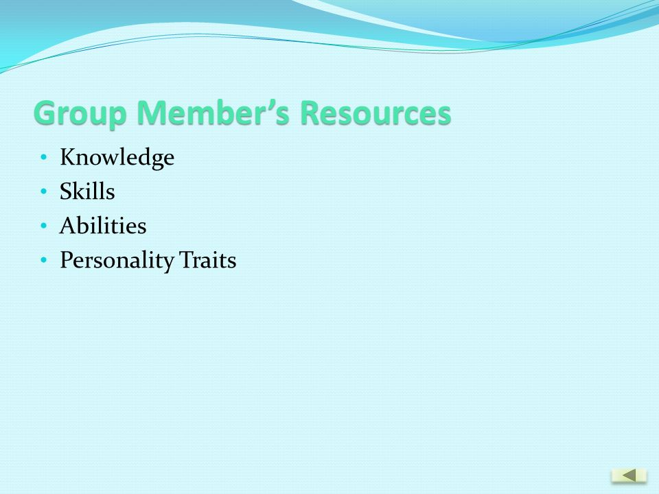 Group Member's Resources Knowledge Skills Abilities Personality Traits
