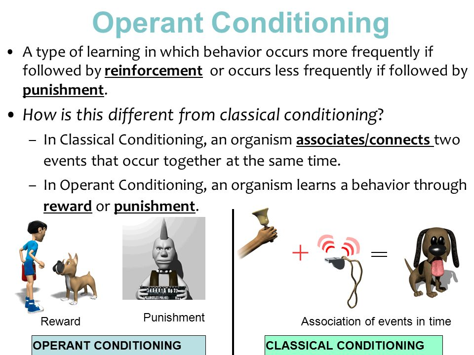 Example Of Operant Conditioning] The Four Quadrants Of Operant ...