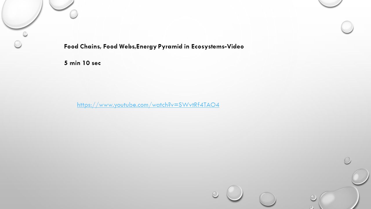 v=SWvtRf4TAO4 Food Chains, Food Webs,Energy Pyramid in Ecosystems-Video 5 min 10 sec