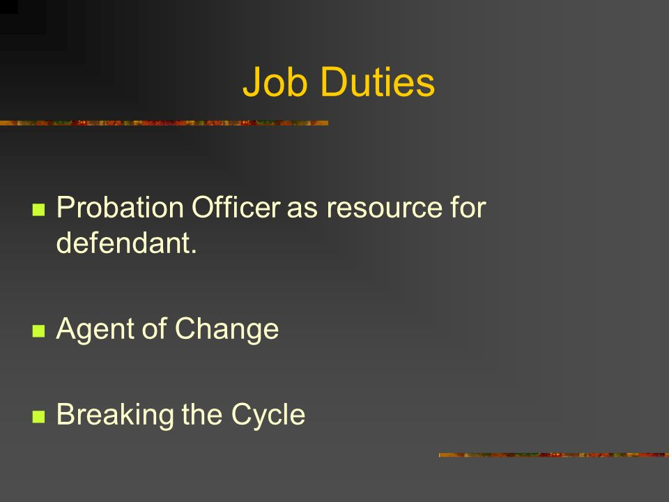 Probation officer job description