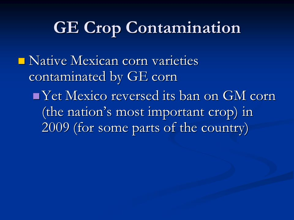 GE Crop Contamination Native Mexican corn varieties contaminated by GE corn Native Mexican corn varieties contaminated by GE corn Yet Mexico reversed its ban on GM corn (the nation's most important crop) in 2009 (for some parts of the country) Yet Mexico reversed its ban on GM corn (the nation's most important crop) in 2009 (for some parts of the country)