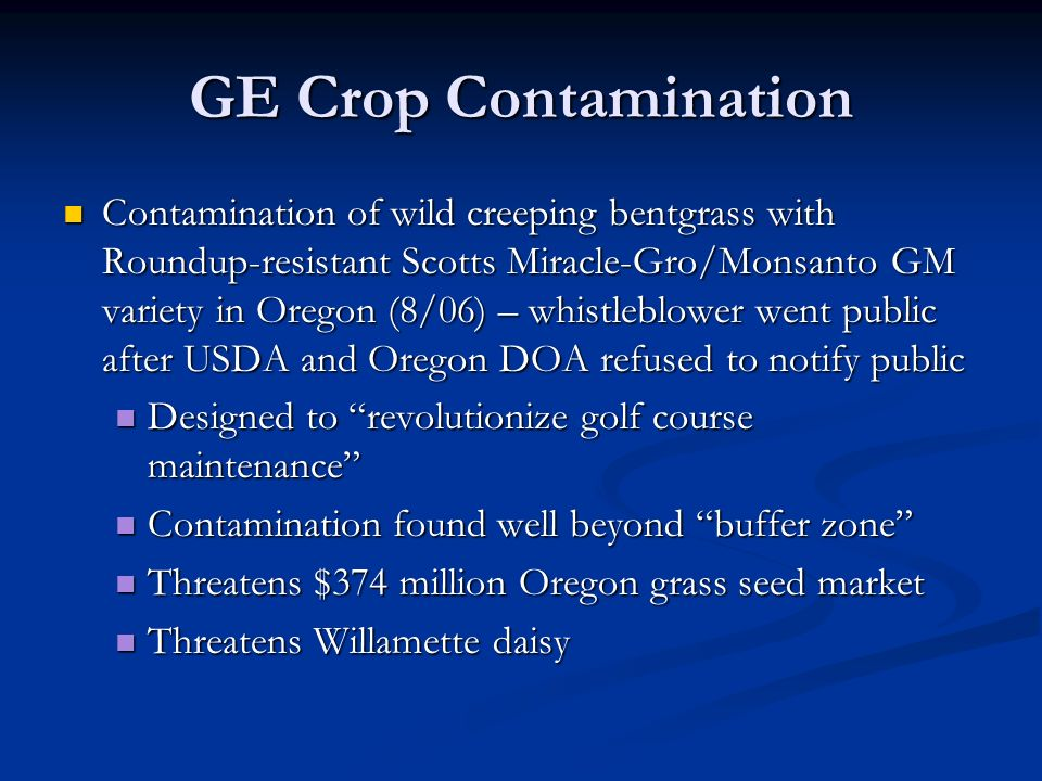 GE Crop Contamination Contamination of wild creeping bentgrass with Roundup-resistant Scotts Miracle-Gro/Monsanto GM variety in Oregon (8/06) – whistleblower went public after USDA and Oregon DOA refused to notify public Contamination of wild creeping bentgrass with Roundup-resistant Scotts Miracle-Gro/Monsanto GM variety in Oregon (8/06) – whistleblower went public after USDA and Oregon DOA refused to notify public Designed to revolutionize golf course maintenance Designed to revolutionize golf course maintenance Contamination found well beyond buffer zone Contamination found well beyond buffer zone Threatens $374 million Oregon grass seed market Threatens $374 million Oregon grass seed market Threatens Willamette daisy Threatens Willamette daisy