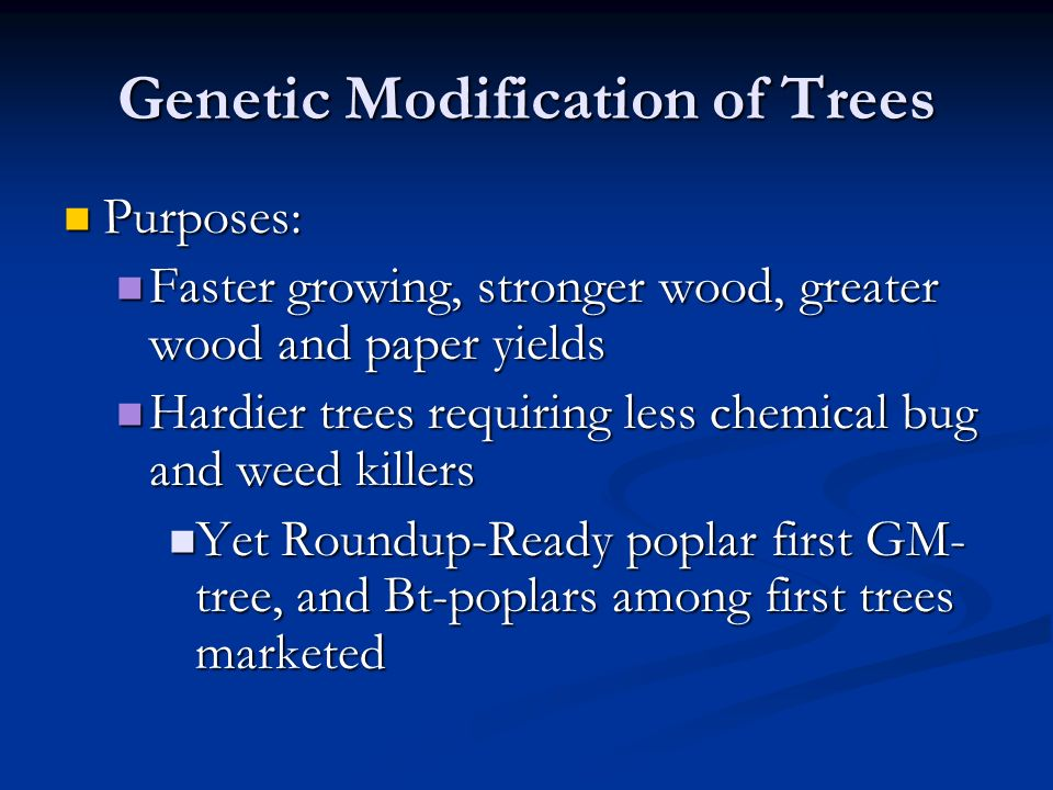 Genetic Modification of Trees Purposes: Purposes: Faster growing, stronger wood, greater wood and paper yields Faster growing, stronger wood, greater wood and paper yields Hardier trees requiring less chemical bug and weed killers Hardier trees requiring less chemical bug and weed killers Yet Roundup-Ready poplar first GM- tree, and Bt-poplars among first trees marketed Yet Roundup-Ready poplar first GM- tree, and Bt-poplars among first trees marketed