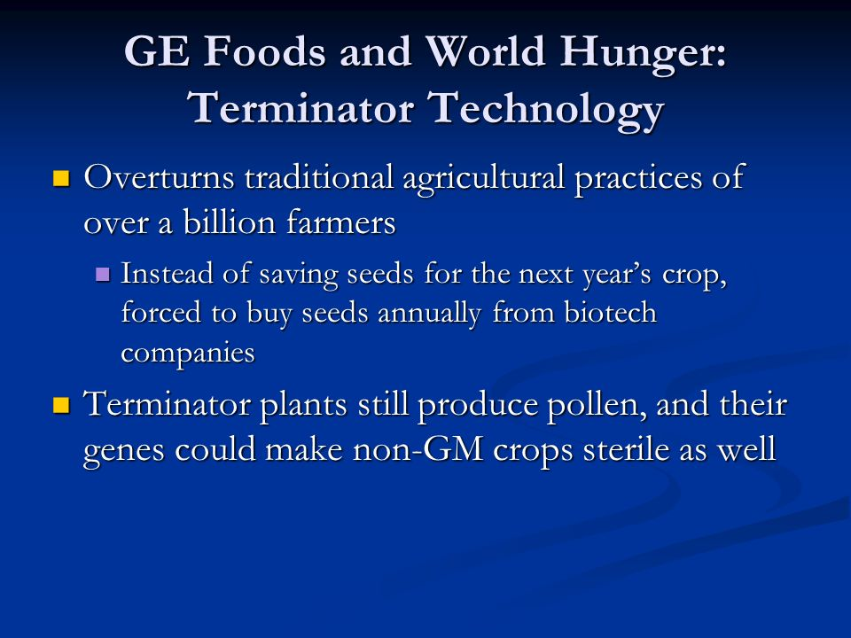 GE Foods and World Hunger: Terminator Technology Overturns traditional agricultural practices of over a billion farmers Overturns traditional agricultural practices of over a billion farmers Instead of saving seeds for the next year's crop, forced to buy seeds annually from biotech companies Instead of saving seeds for the next year's crop, forced to buy seeds annually from biotech companies Terminator plants still produce pollen, and their genes could make non-GM crops sterile as well Terminator plants still produce pollen, and their genes could make non-GM crops sterile as well