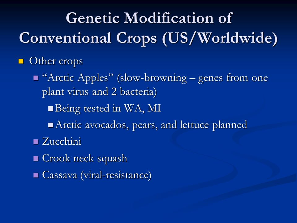 Genetic Modification of Conventional Crops (US/Worldwide) Other crops Other crops Arctic Apples (slow-browning – genes from one plant virus and 2 bacteria) Arctic Apples (slow-browning – genes from one plant virus and 2 bacteria) Being tested in WA, MI Being tested in WA, MI Arctic avocados, pears, and lettuce planned Arctic avocados, pears, and lettuce planned Zucchini Zucchini Crook neck squash Crook neck squash Cassava (viral-resistance) Cassava (viral-resistance)