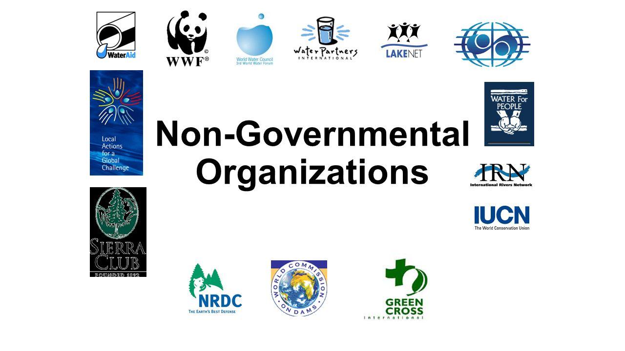 Model United Nations NGO Guide | Best Delegate