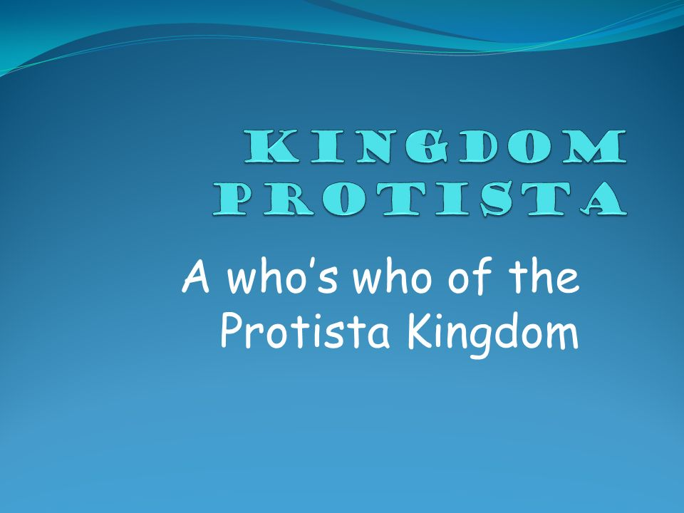 A who's who of the Protista Kingdom