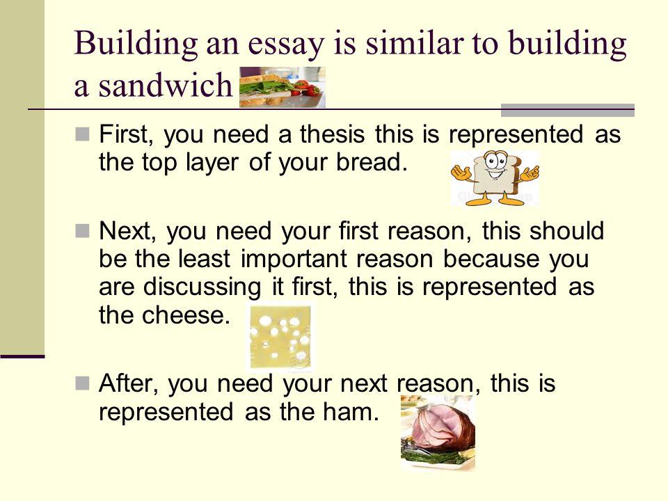 essay edit.jpg