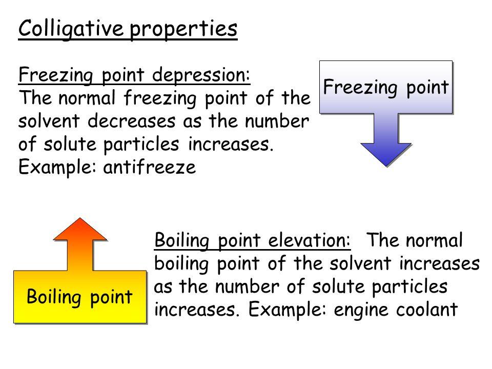 collegative properties essay