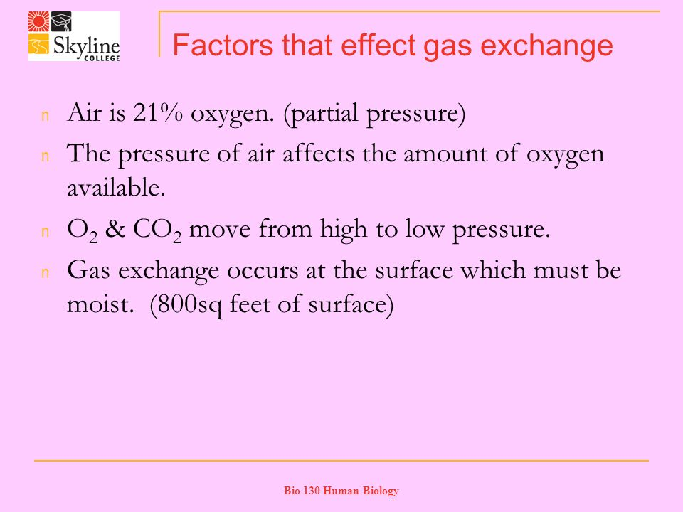 Bio 130 Human Biology Factors that effect gas exchange n Air is 21% oxygen.