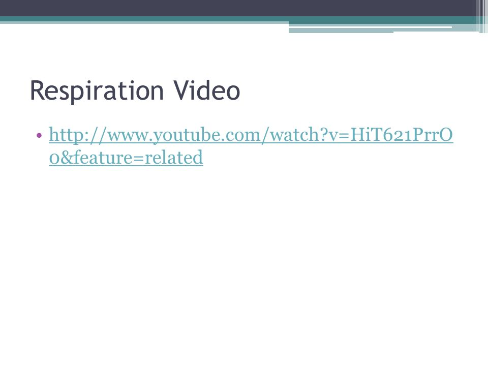 Respiration Video   v=HiT621PrrO 0&feature=relatedhttp://  v=HiT621PrrO 0&feature=related