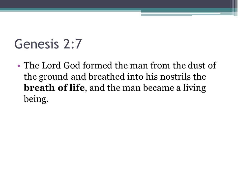 Genesis 2:7 The Lord God formed the man from the dust of the ground and breathed into his nostrils the breath of life, and the man became a living being.