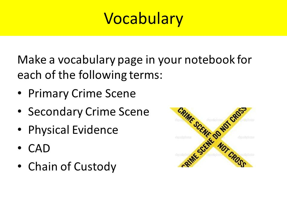 Vocabulary Make a vocabulary page in your notebook for each of the following terms: Primary Crime Scene Secondary Crime Scene Physical Evidence CAD Chain of Custody