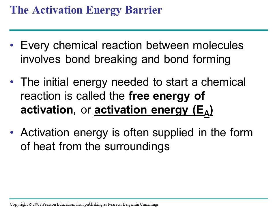 an introduction to the source of energy required for living